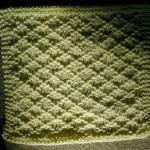 Lattice Dishcloth