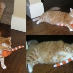 Henry with the prototype Toy Snake